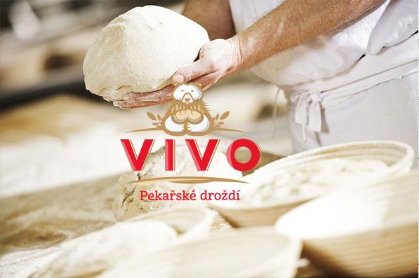 Logo VIVO - koláž